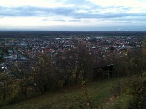 Blick über Weingarten