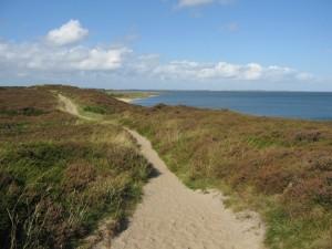 Die Braderuper Heide: Kleine Pfade, verspielte Treppen, schöne Aussicht
