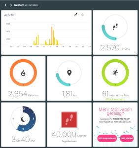 Ein Eindruck mit Fitbit Webportal, genannt Dashboard