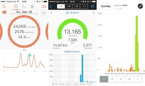 Aktivitätsdarstellung bei Misfit, Garmin und Fitbit (von links nach rechts)